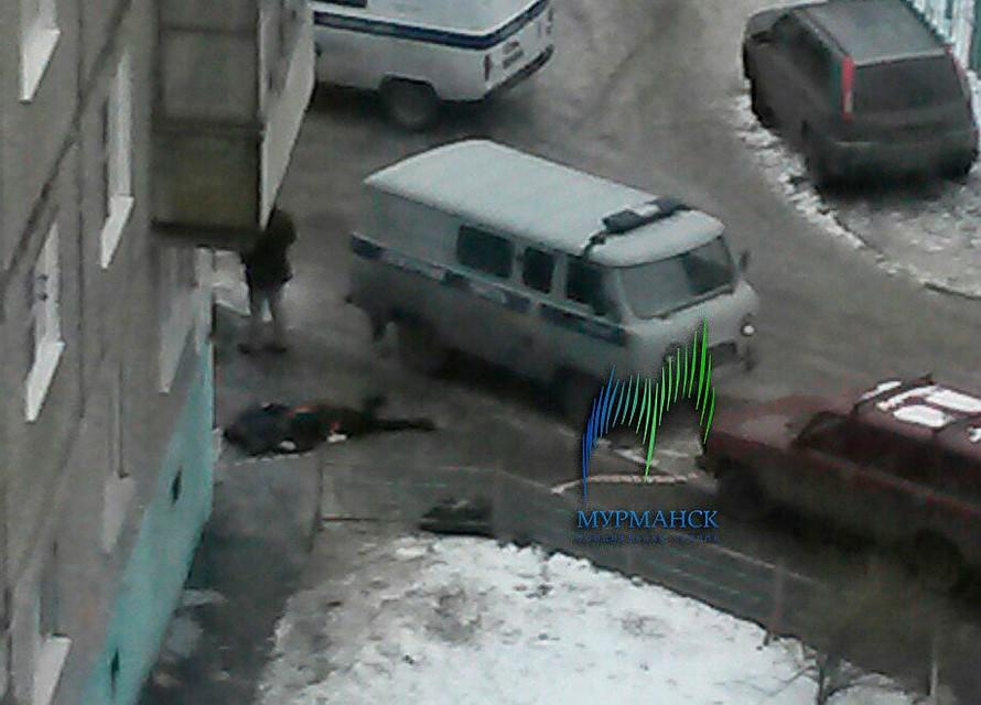 Питерские дешовый проститутки 1000руб