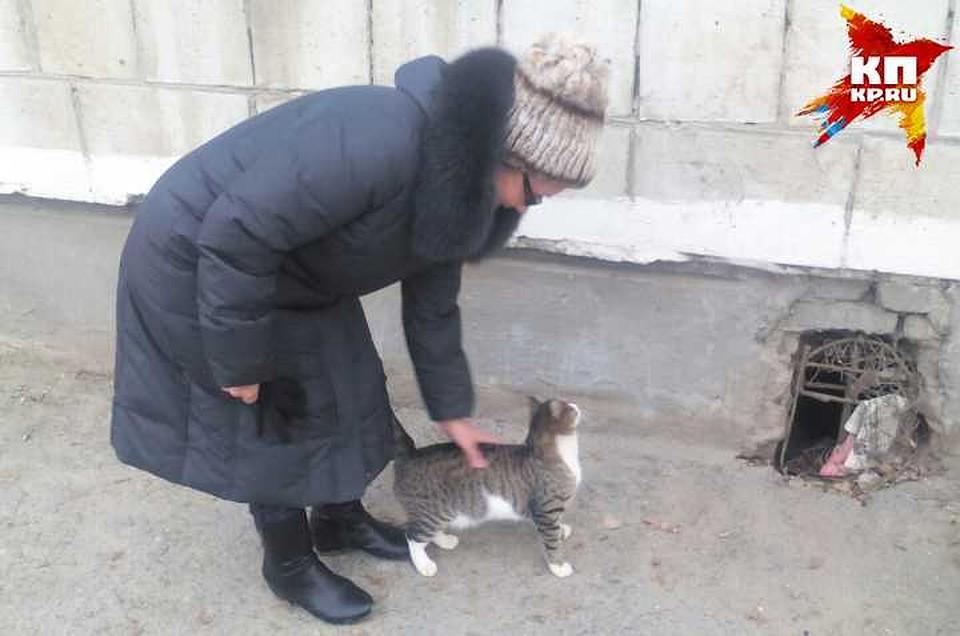 Русские малюсенький котенок ростом с мизинец фото под