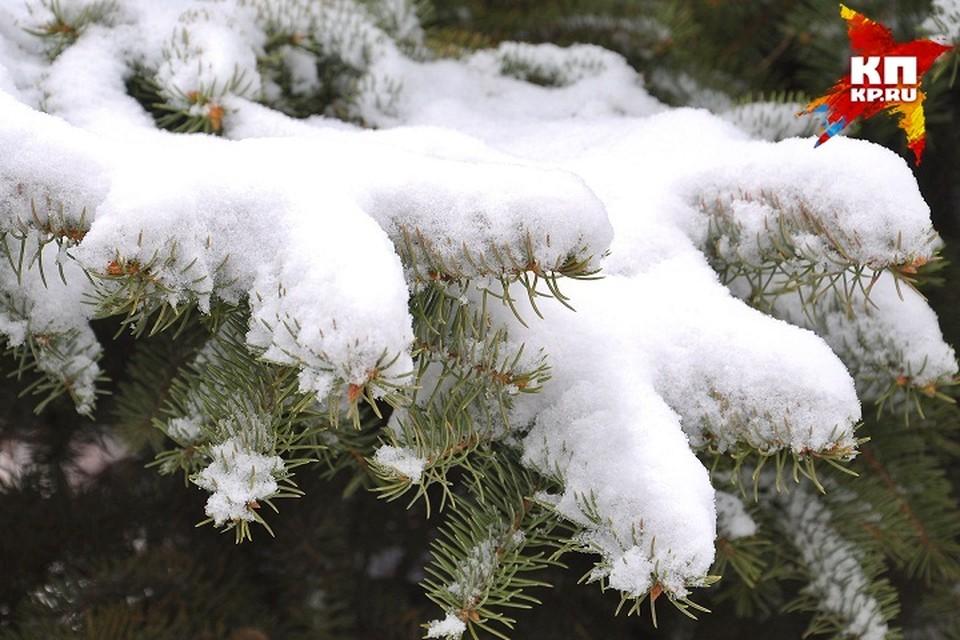 В выходные в Ижевске будет ветрено и немного снежно