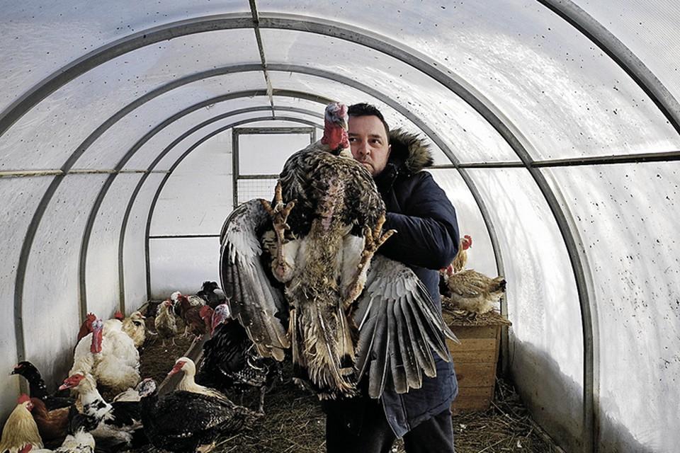 Только третья птичья ферма Дмитрия Климова стала приносить ему более-менее устойчивый доход. Причем фуа-гра - не основной продукт.