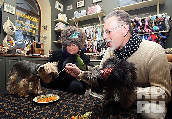 термобелье кафе с собаками москва 24 является