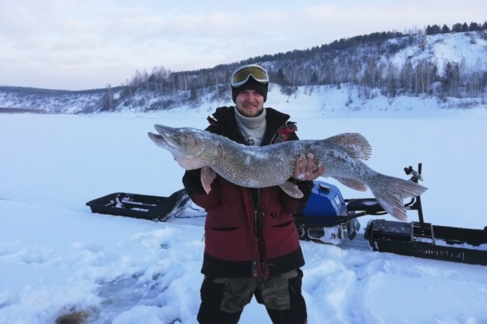 Рыбаки из Кузбасса поймали щуку длиной 113 сантиметров и весом 10,5 килограмма. Настоящая царь-щука! ФОТО: Александр Новицкий.