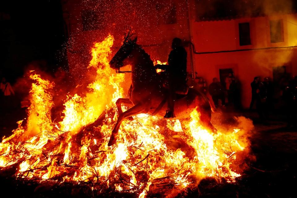 В испанском Сан-Бартоломе-де-Пинарес прошел ежегодный фестиваль Las Luminarias, который отмечают накануне Дня покровителя домашних животных святого Антония. Местные жители верят в очищающую силу огня, поэтому во время праздника верхом прыгают через костры