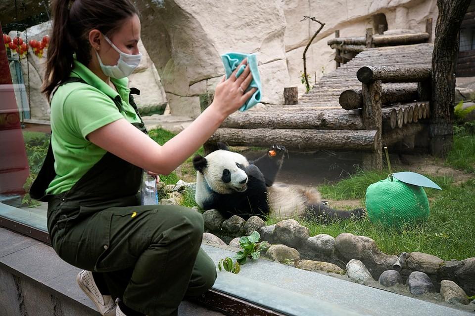 В Москве после трехмесячного перерыва открылся зоопарк