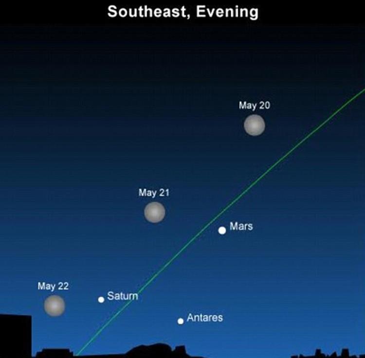 В средних широтах во время  майского  противостояния Марс не поднимется над горизонтом выше 10-15 градусов. Но будет сиять  все темное время суток в виде яркой оранжевой звезды в созвездии Скорпиона. Искать МАрс надо на юго-западе.
