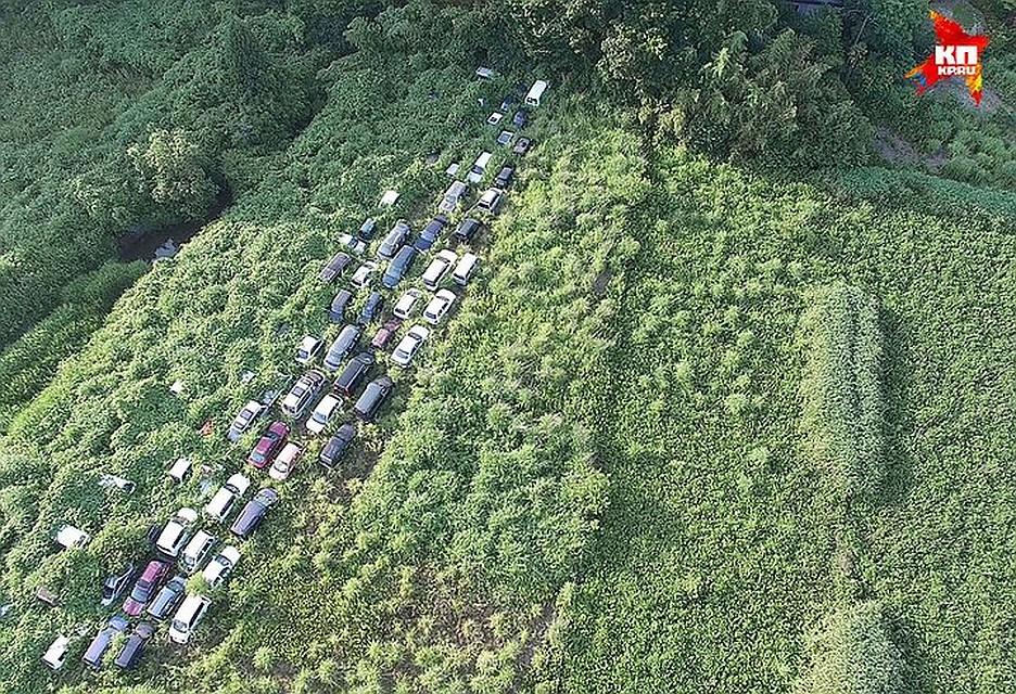 Жизнь на Земле есть везде. Так, на Фукусиме природа сметает следы человека после аварии на АЭС ФОТО: Arkadiusz Podniesinski/REX Shutterstock/Fotodom.ru