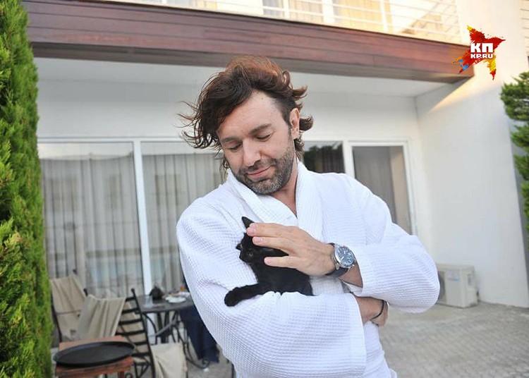 В честь Филиппа Киркорова Андрей Малахов назвал котёнка Филей