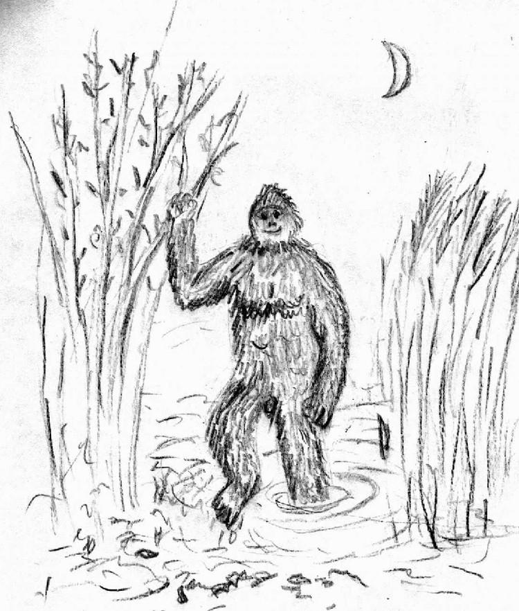 Некоторые обезьяны жили на болотах. Их могли принимать за русалок. Или за йети. Или даже за чертей.