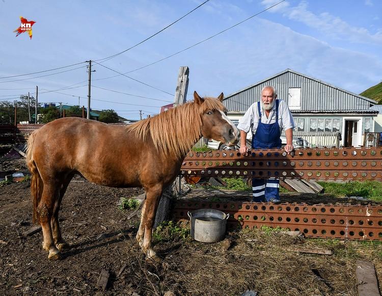 Приловский Валерий собирается строить ферму на 50 голов и делать свой Итурупский сыр