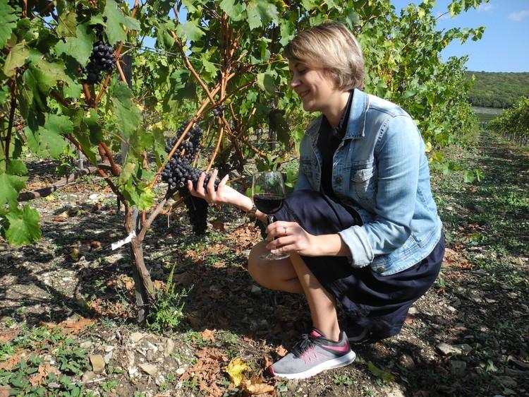 Тут можно не только попробовать авторское вино, но и прикоснуться к его истокам... Фото: Алексей БОЯРСКИЙ
