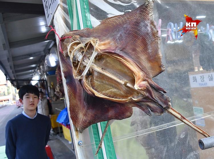 Здесь же зашли на рыбный рынок посмотреть ассортимент и испугались морских скатов, которые сушились на ветру, напоминая дьяволов. Тут я понял, что с вегетарианской кухней я точно не ошибся.