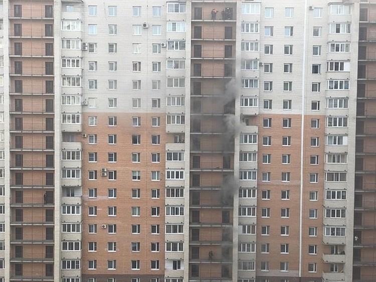 По словам очевидцев, пожарная лестница дотянулась только до 9-го этажа. Фото: ДТП и ЧП/ВКонтакте