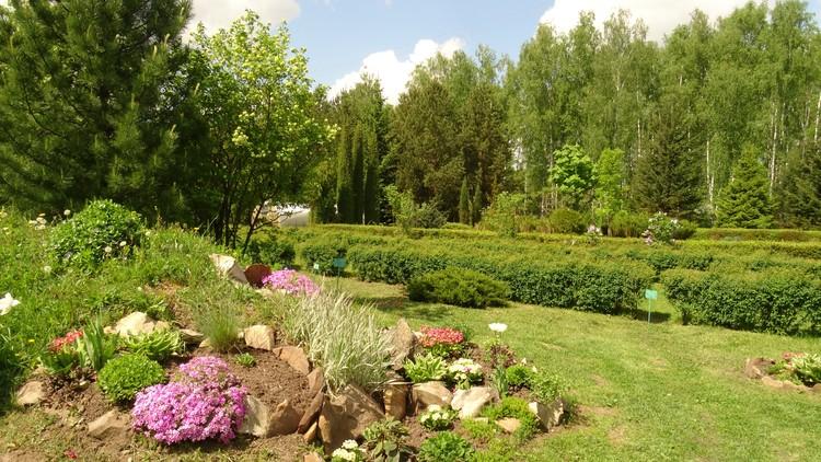 Железногорский дендрарий является собственностью Курской области и относится к особо охраняемым природным территориям.