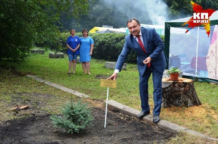 В честь 90-летия района депутатом Курской областной Думы В.А. Лазаренко в п. Касторное были посажены ели