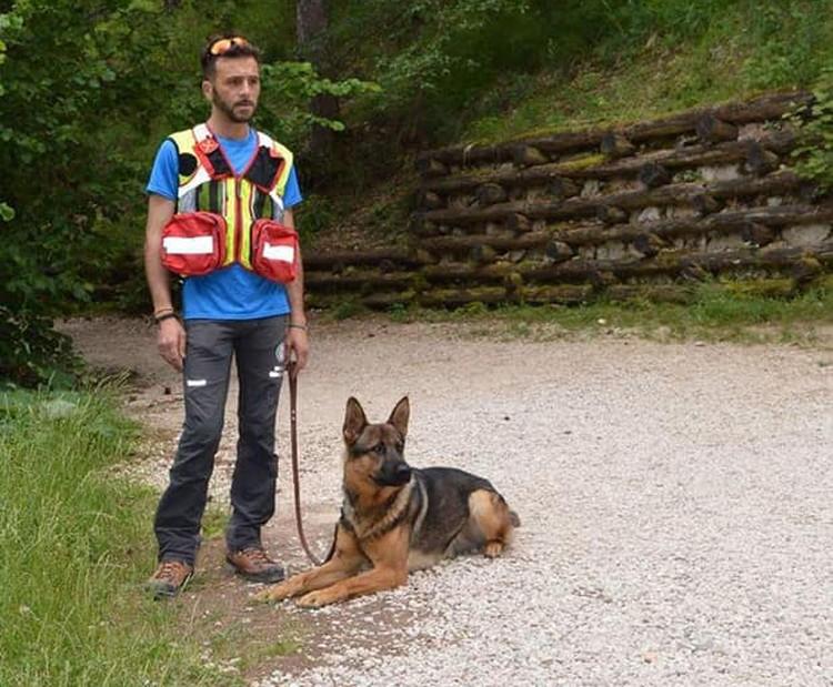 Этот пес спас не одну человеческую жизнь. Фото: fabiano.ettorre