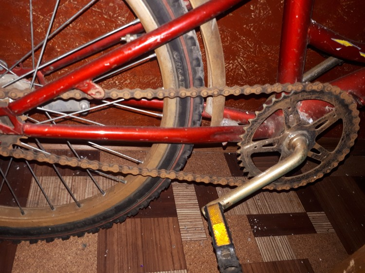 Хозяйка думает, что велосипед уже не спасти. Фото: Александра Нестеренко / ВКонтакте