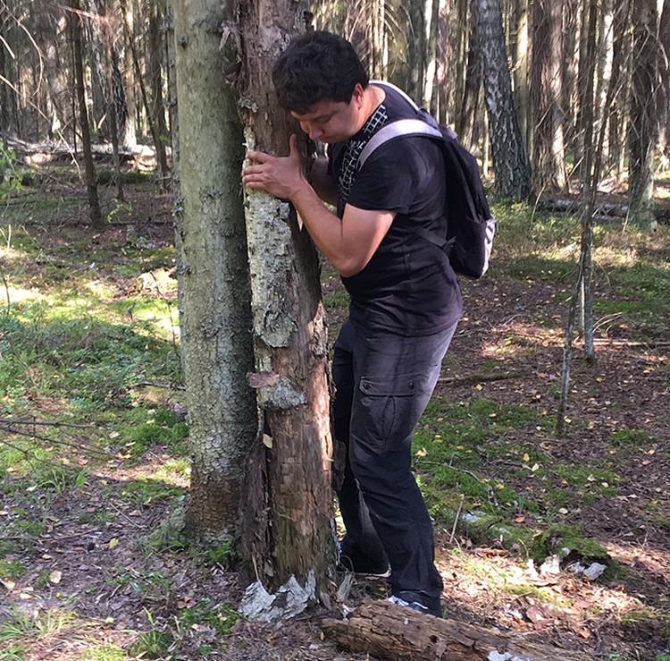 Кто-то взял березовый ствол и прислонил его к елке. Зачем такое делать обычному человеку?