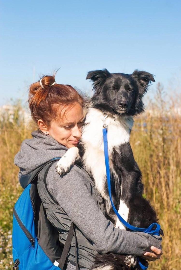 """Бьянка уже обрела свой дом Фото предоставил благотворительный фонд """"Собаки, которые любят""""."""
