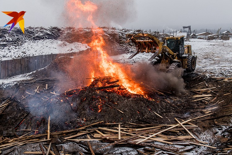 Эксковатор сбрасывает остатки горбыля в яму