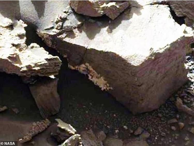 Плесень, въевшаяся в марсианский камень.