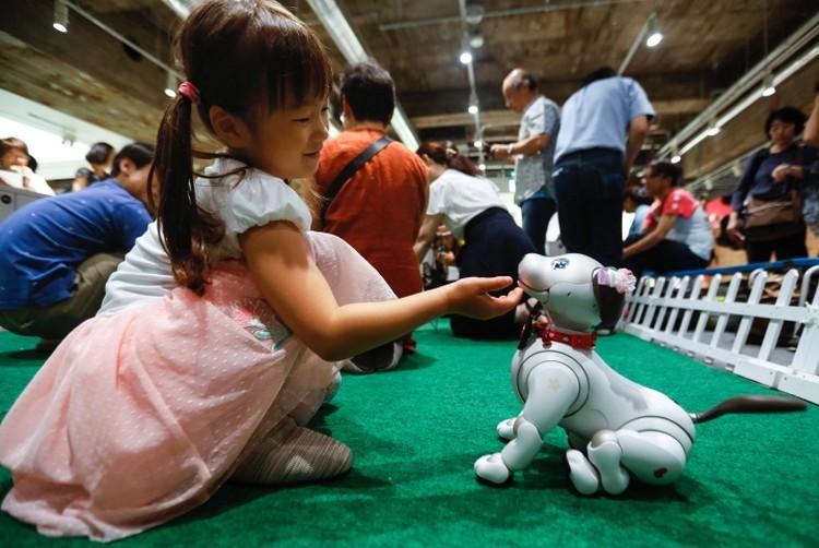 Электронные домашние питомцы - уже реальность. Но могут ли они полноценно заменить животных - большой вопрос. Фото: ТАСС/EPA/KIMIMASA MAYAMA