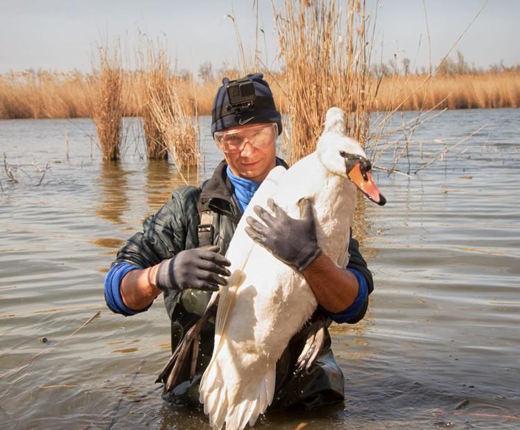 Рыбаки вытащили птицу. Фото: Михаил Колесник