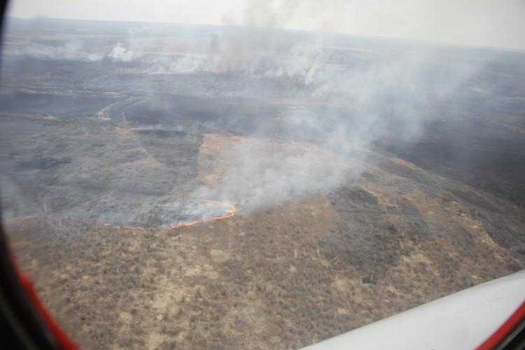 Пожар в Мазановском районе. Вид с вертолета. Фото: Анатолий ЛЕВСКОЙ
