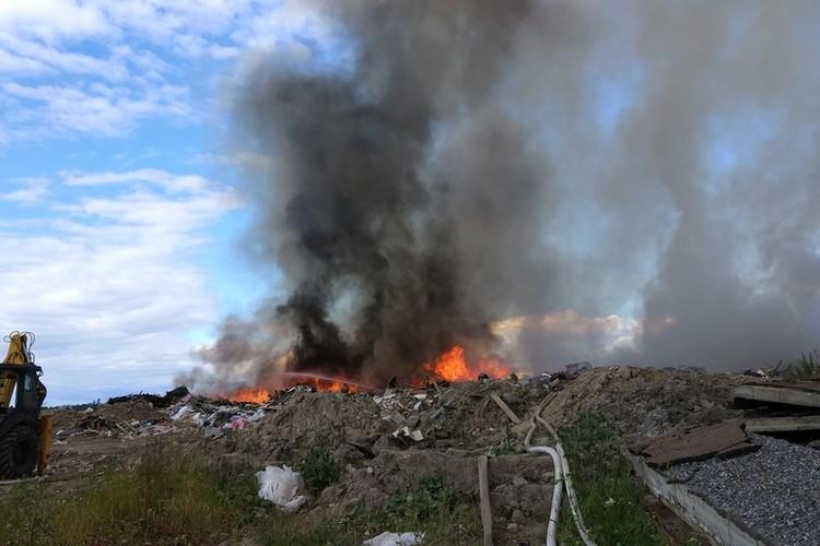 По словам местных жителей, свалка горит уже четвертый день. Фото: ДТП и ЧП   Санкт-Петербург   Питер Онлайн   СПб