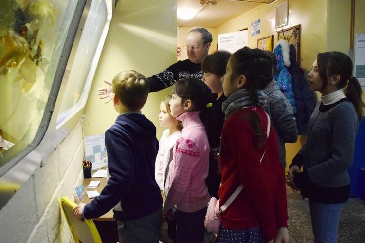 Школа аквариумиста «Nautilus»