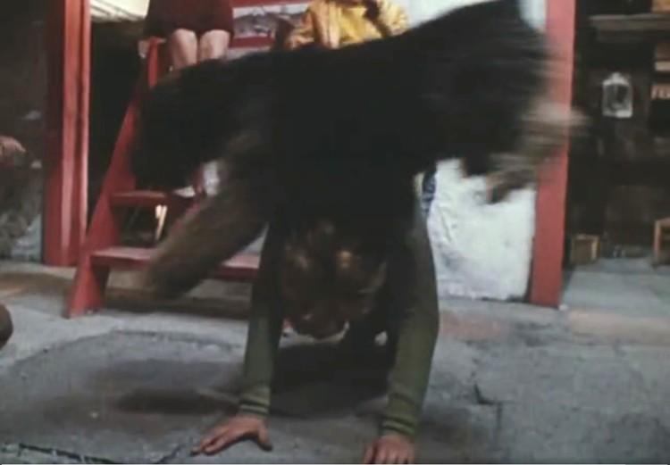 В знаменитом гараже Сыроежкина было все - друзья, собака, мопед, гитара и даже близнец-робот. Кадр из фильма.