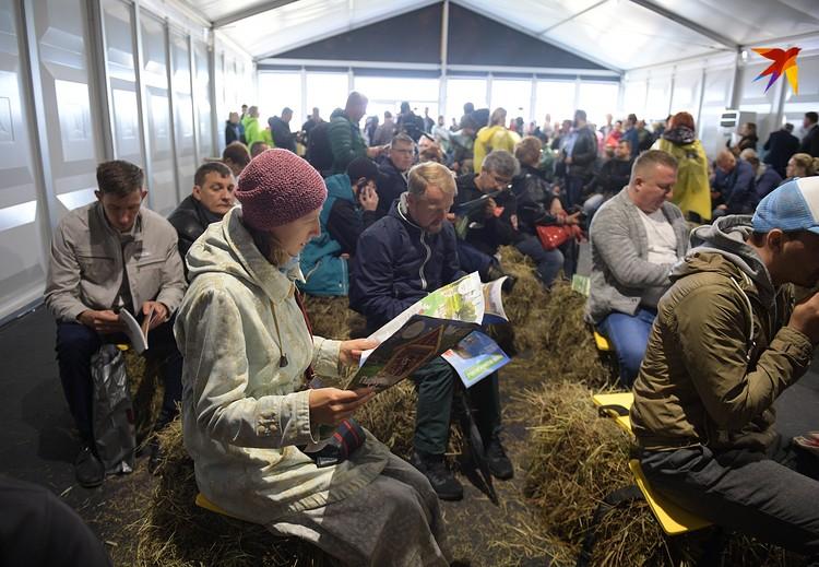 Никакой формалистики даже в деловом павильоне (там собрались будущие фермеры, представители власти и пресса) - соломенные кубы вместо стульев. В деревне все-таки!