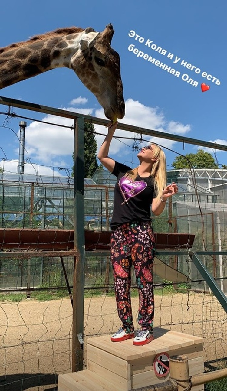 А от жирафа Коли Анна Семенович осталась в восторге