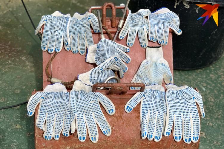 Исследователи северных морей работают в белых перчатках.