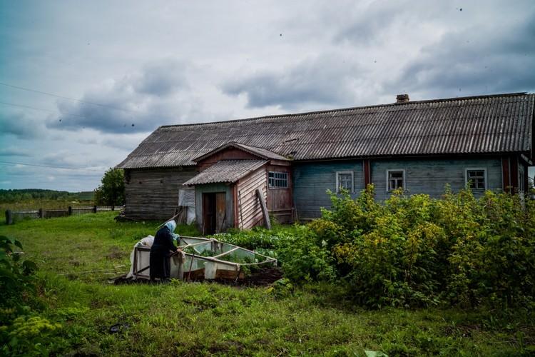 Экономически деревня в прежнем виде в самом деле не нужна