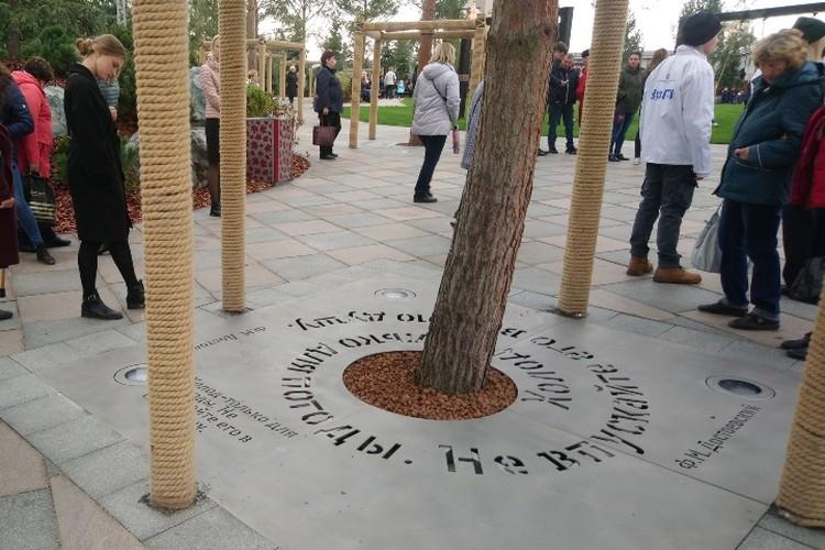 В парке высажена аллея из 60 германских сосен - по числу погибших в торговом центре