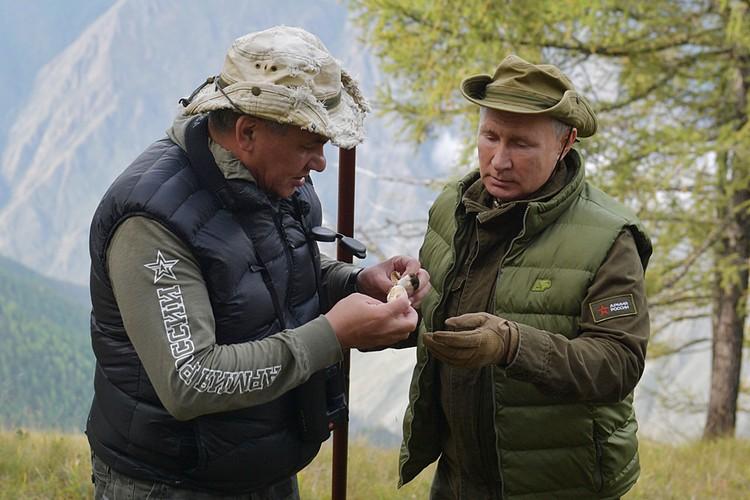 - И шишка сверху, - протянул Путин Шойгу поднятый гриб, на котором действительно примостилась маленькая шишка. Фото: Алексей Дружинин/ТАСС