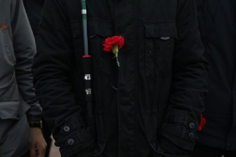 Красная гвоздика - традиционный символ праздника