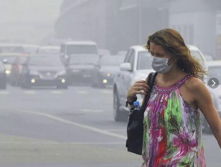 Люди, которые берегут свое психическое и физическое здоровье, стараются оградить себя от пыли.