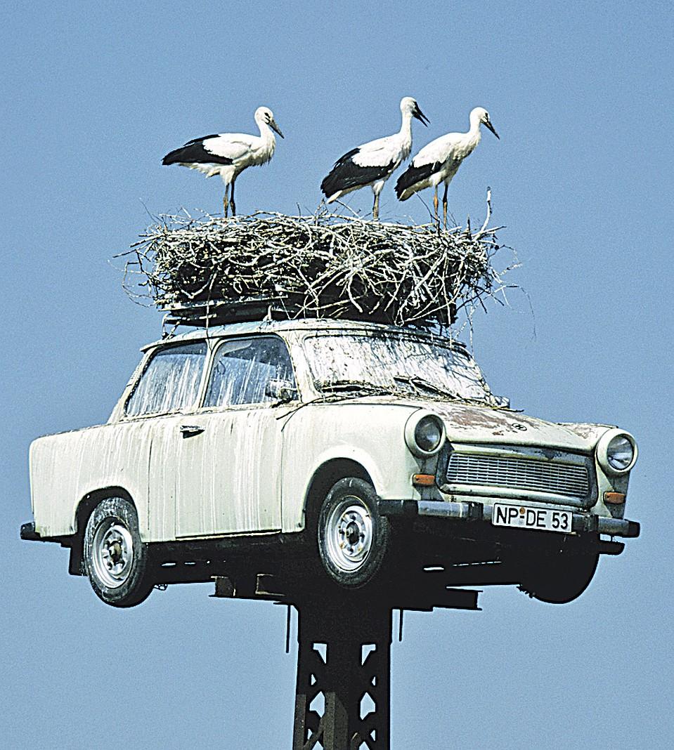 Утилизационный сбор на автомобили вырастет