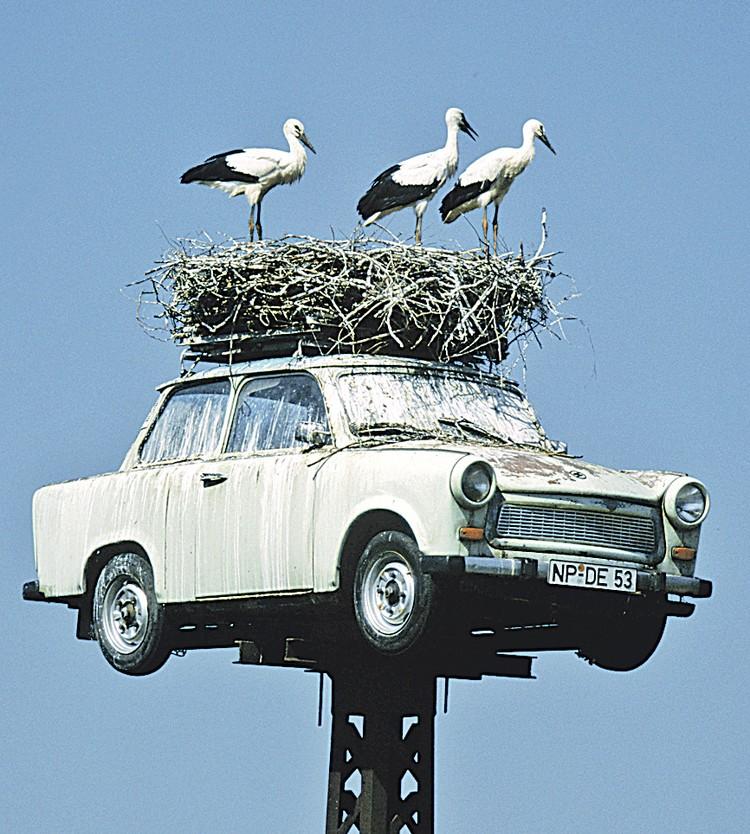 Отечественные авто утилизировать выгоднее.