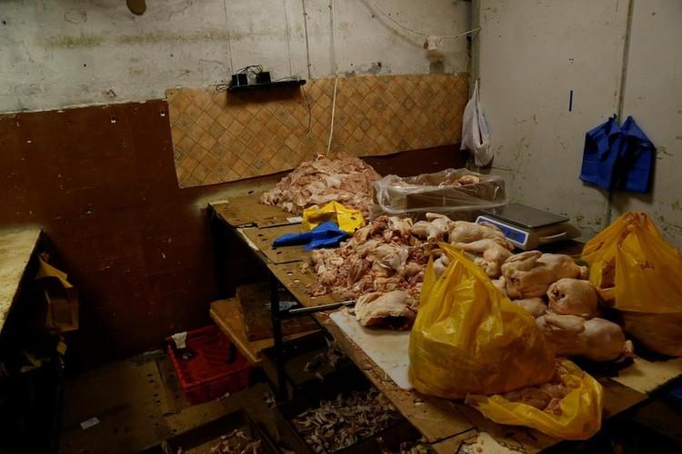 Вся курица была опасной, а санитарные нормы нарушены в грубой форме. Фото:Россельзхознадзор по СПб ЛО и ПО.