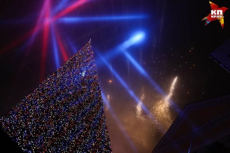 Главная елка края горит праздничными огнями