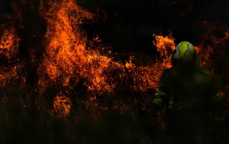 На помощь пожарным переброшены тысячи резервистов Фото: GLOBAL LOOK PRESS