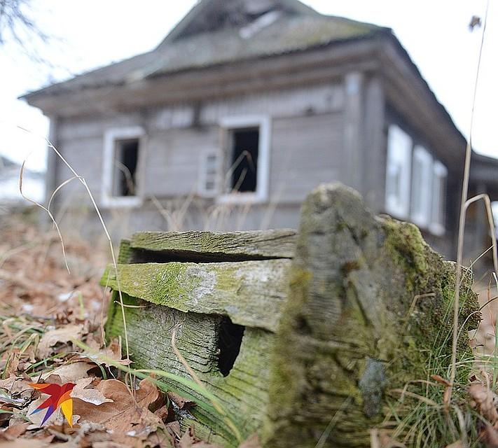Заброшенный дом в мертвой деревне Халютино, Тверская область. Фото: Дмитрий СТЕШИН