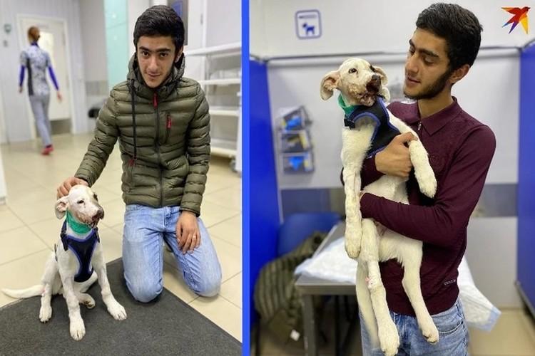 Анар спасал щенка