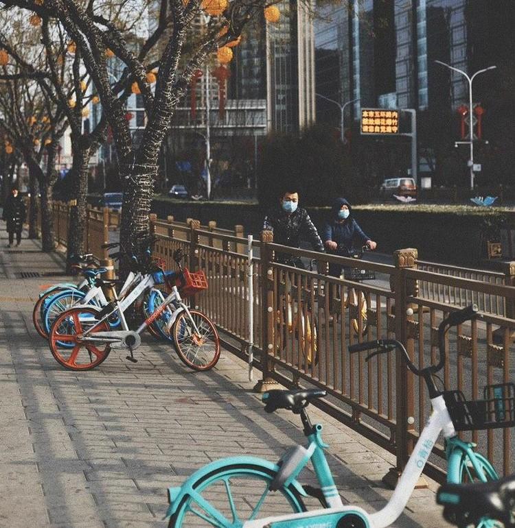 Даже катаются на велосипедах. Фото: @povkhhh