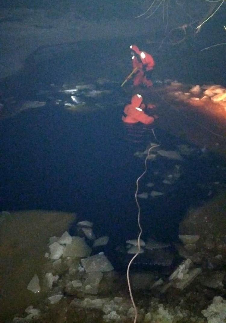 Спасатели выловили тело пенсионера и собаки Фото: поисково-спасательный отряд Тосно