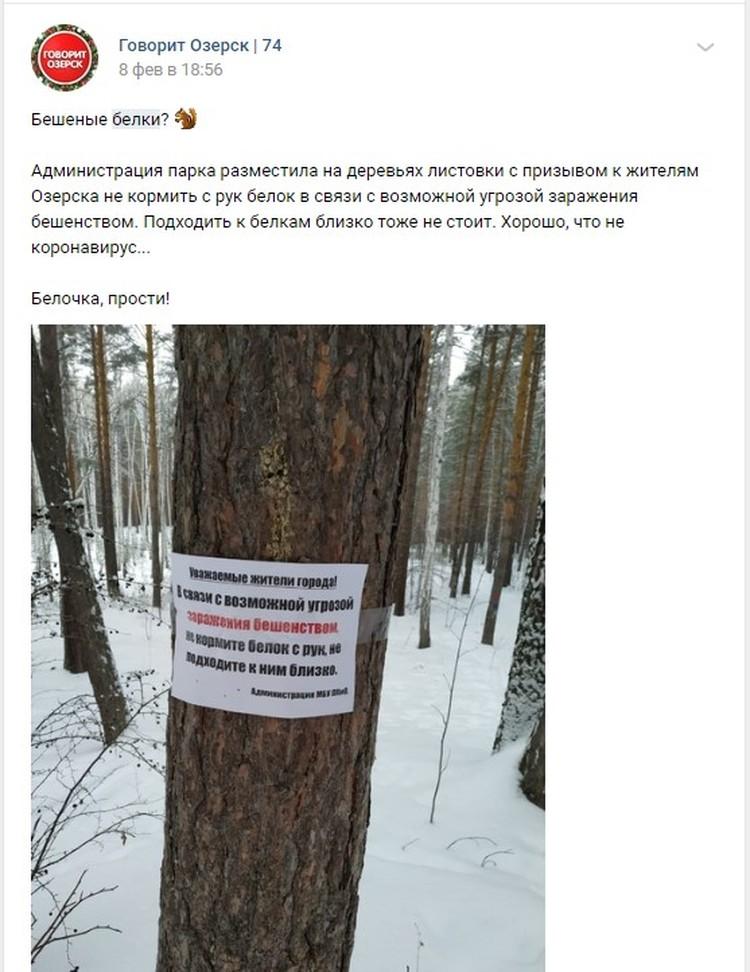 Фотографию объявления разместили в соцсетях. Фото: vk.com/«Говорит Озерск | 74»