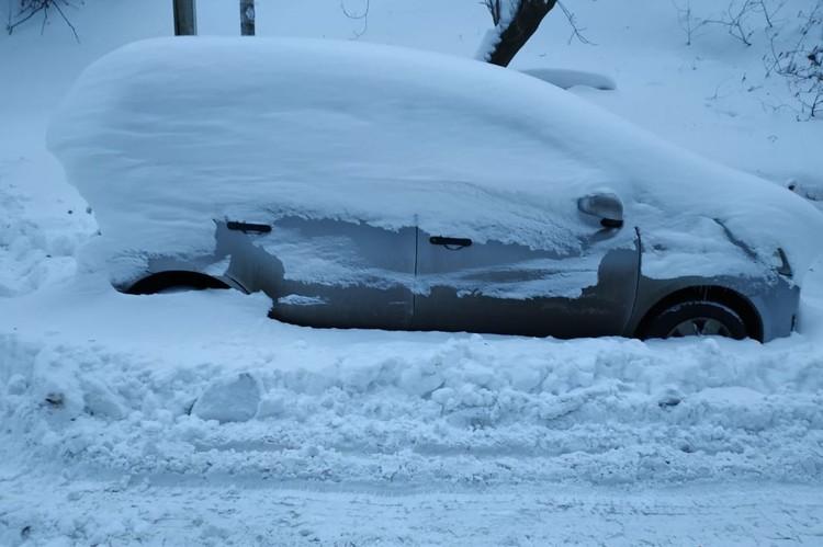 Игра «Найди авто» во Владивостоке крайне актуальна