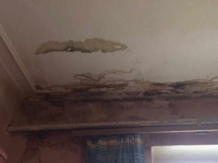 В одной из комнат от сырости отваливаются потолки